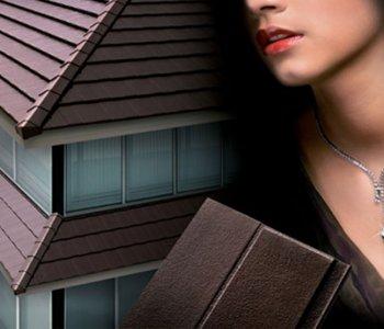 roof-admus