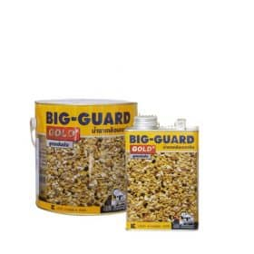 BIG-GUARD GOLD น้ำยาเคลือบเงาหิน