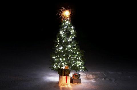 จัดสวนรับเทศกาลคริสต์มาสและปีใหม่ เสริมดวงให้กับผู้อยู่อาศัยด้วย 4