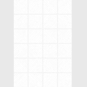 COTTO แมทริกซ์ ขาว 8X12 PM