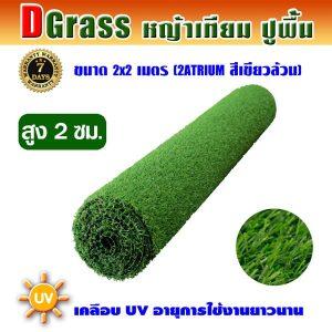Dgrass หญ้าเทียมปูพื้น ตกแต่งสวน รุ่น DG-2A (สีเขียวล้วน)ขนาด2x2เมตร