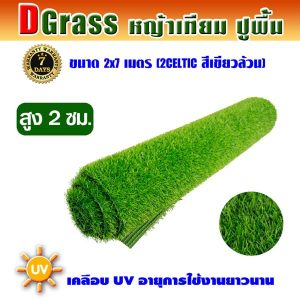 Dgrass หญ้าเทียมปูพื้น ตกแต่งสวน รุ่น DG-2C (สีเขียวล้วน)ขนาด2x7เมตร