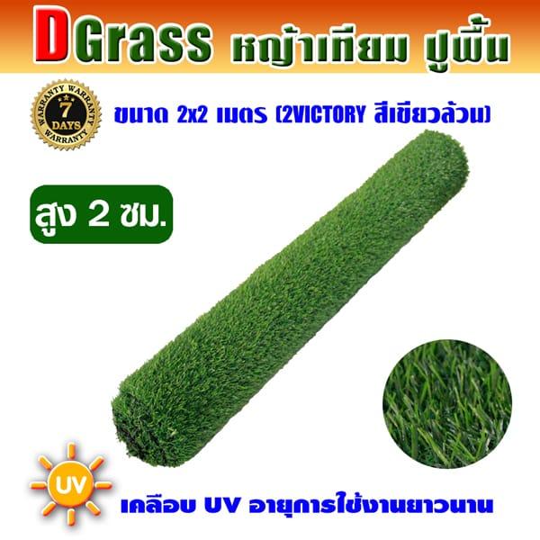 Dgrass หญ้าเทียมปูพื้น ตกแต่งสวน รุ่น DG-2V (สีเขียวล้วน)ขนาด2x2เมตร