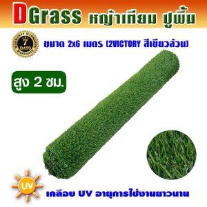 Dgrass หญ้าเทียมปูพื้น ตกแต่งสวน รุ่น DG-2V (สีเขียวล้วน)ขนาด2x6เมตร