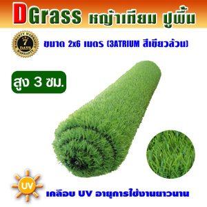 Dgrass หญ้าเทียมปูพื้น ตกแต่งสวน รุ่น DG-3A (สีเขียวล้วน)ขนาด2x6เมตร