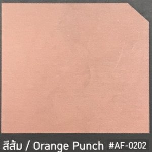 สีปูนฉาบเบเยอร์ชิลด์ ลอฟท์AF-0202 สีส้ม