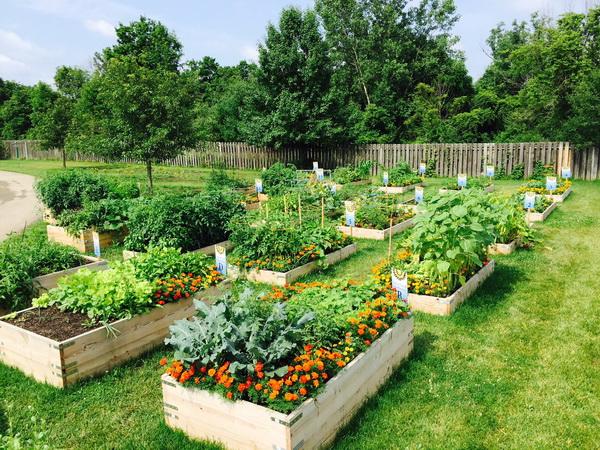 เคล็ดลับดูแลสวน ให้ดูสวยเพิ่มความสดชื่น คืนความสดใสให้คนในบ้าน