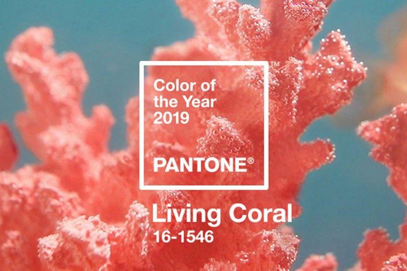Pantone ประกาศสีประจำปี 2019 คือ Living Coral สีแห่งประการังมีชีวิต