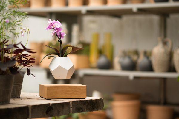 LYFE กับเทคโนโลยีไร้แรงโน้มถ่วงในการปลูกพืช