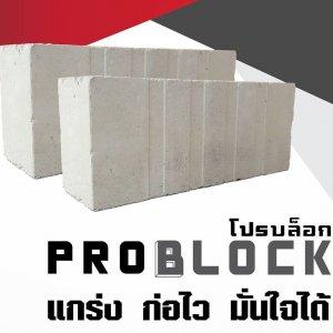 อิฐโปรบล็อค Problock
