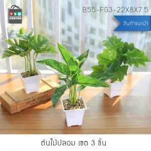 ต้นไม้ปลอมแต่งบ้าน (เซ็ต 3 ชิ้น) ขนาด 8.5x8.5x29 CM. รุ่น B55-FG3-22X8X7.5