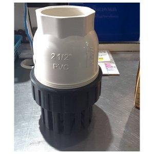 TTC PVC ฟุตวาล์วหัวกระโหลกดูดน้ำ(ลูกบอล)