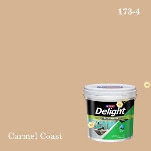 ดีไลท์สีน้ำอะครีลิก ภายใน I-173-4 (Carmel Coast)
