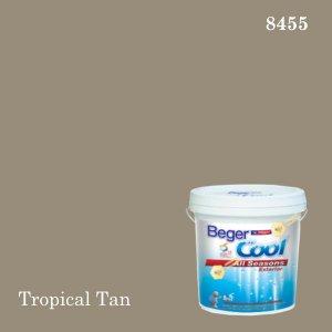 เบเยอร์คูล ออลซีซั่นส์สีน้ำอะครีลิก-ภายนอก (SSR) E-8455 (Tropical Tan)