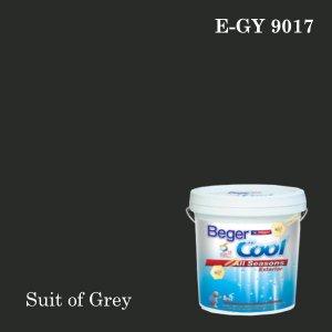 เบเยอร์คูล ออลซีซั่นส์สีน้ำอะครีลิก-ภายนอก (SSR) E-GY 9017 (Suit of Grey)