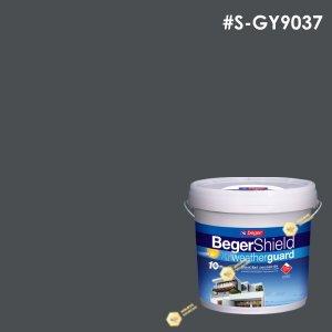 สีน้ำอะครีลิก S-GY 9037/B เบเยอร์ชิลด์ (Blackberry Sable)