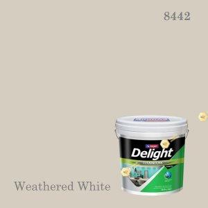 ดีไลท์สีน้ำอะครีลิก ภายใน I-8442 (Weathered White)