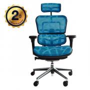 เก้าอี้เพื่อสุขภาพ รุ่น Ergo2