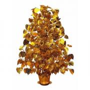 ต้นโพธิ์เงิน โพธิ์ทอง ขนาด 2 ฟุต BODHI TREE 2200-1